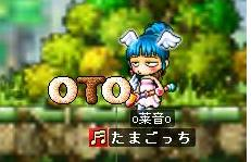 OTO.jpg