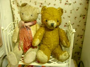 bear0125_1.jpg