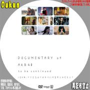 DOCUMENTARY of AKB48 to be continued 10年後、少女たちは今の自分に何を思うのだろう②