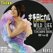 宇多田ヒカル「WILD LIFE 2010.12.8-9 YOKOHAMA ARENA」②