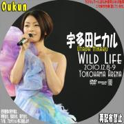 宇多田ヒカル「WILD LIFE 2010.12.8-9 YOKOHAMA ARENA」①