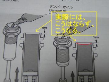 xsP1190737.jpg