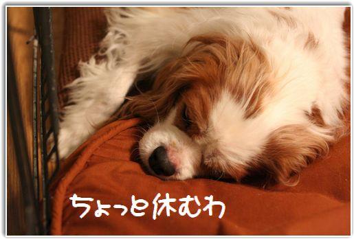 眠る・・・怒ってる?