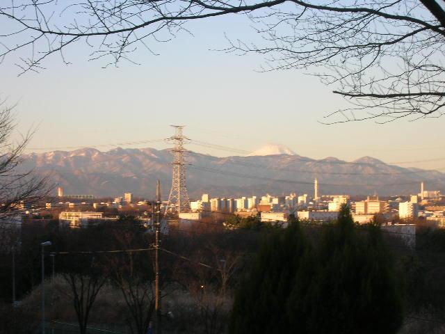 DSCN4936.jpg