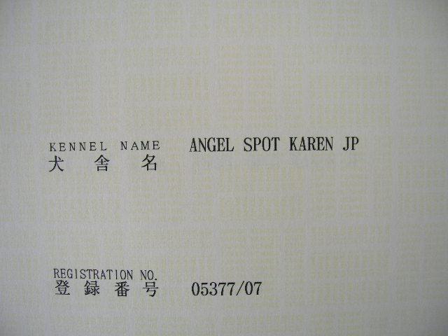 DSCN5580.jpg