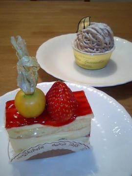 シェシバタケーキ