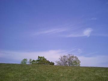 きれいな空気