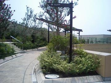 ガーデン③