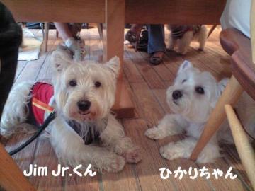 jim.jrくん&ひかりちゃん