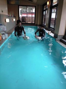 ⑧泳いでる!