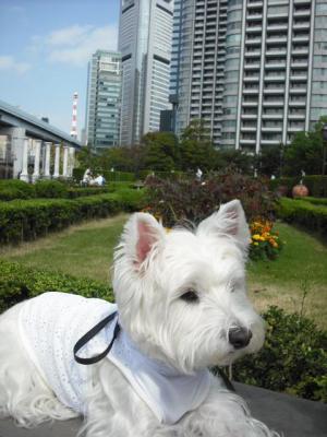 公園⑤.JPG