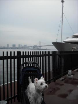 日の出桟橋②.JPG