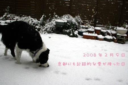 kiss2008.2.16 011-1