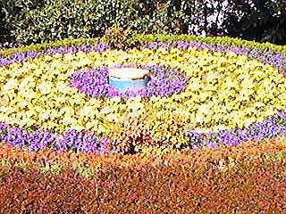 0903後楽園の花時計