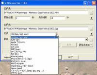 QTConverter形式