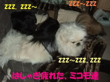 縺ソ縺薙b221001_convert_20110221161506