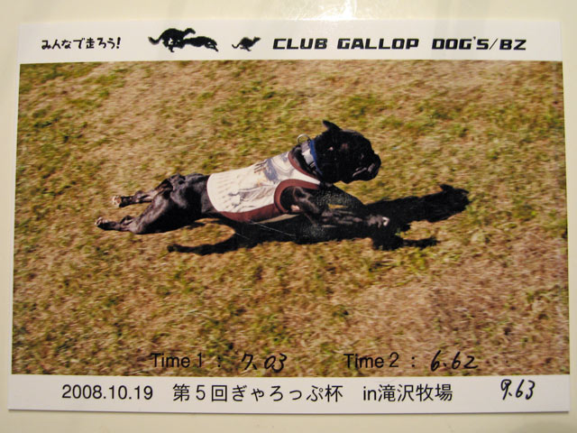2008 10 19  (33)