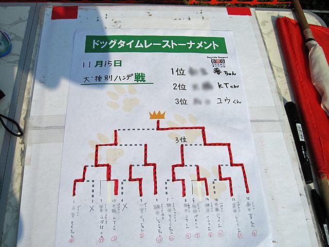 2008 11 15  (16)