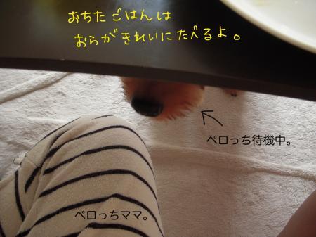 DSCN1213_convert_20110821195827.jpg