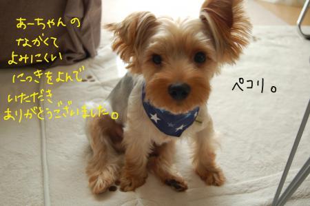 DSC_0459_convert_20110827103702.jpg