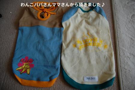 DSC_0490_convert_20110719172243.jpg