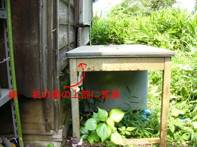 1.ハチ駆除事例40-2