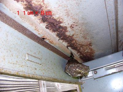 1.ハチ駆除事例40-3