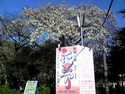 鶴舞公園。