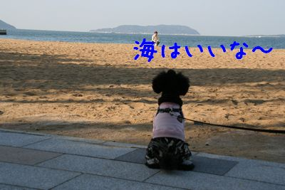 20071123_0125-1.jpg