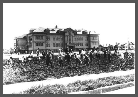 1908s.jpg
