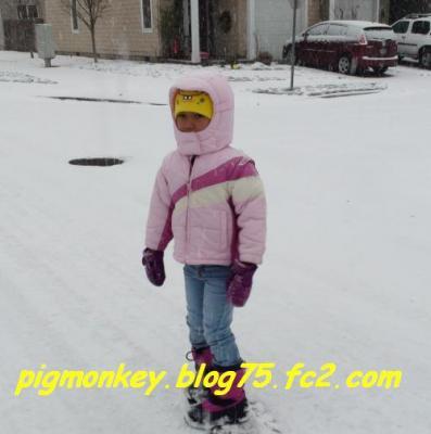 DSC00591_convert_20081218133118.jpg