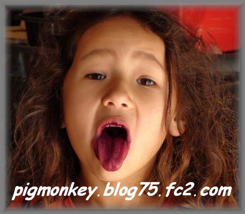 DSC01241_convert_20090205021110.jpg