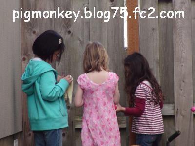 DSC01731_convert_20090314125252.jpg