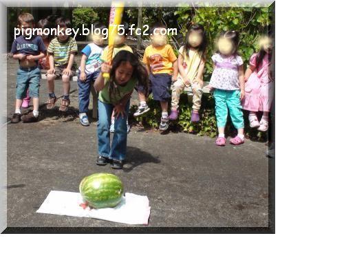 snap_pigmonkey_200954122212.jpg