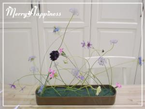 flowerA_20090509-1-2
