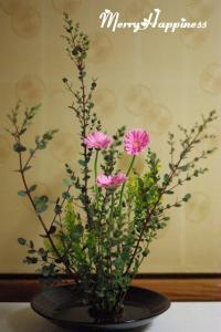 flower_20080228-3