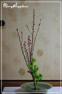 flower_20090221-3
