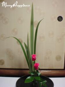 flower_20090321-2
