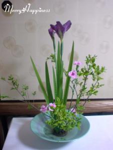 flower_20090418-1