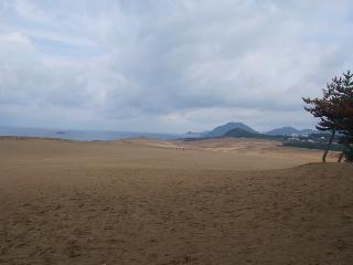 鳥取砂丘01