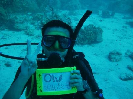 タオ島 ダイビング オープンウォーター講習