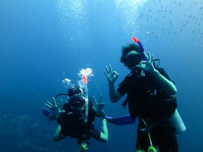 タオ島 ダイビング アドバンス講習4