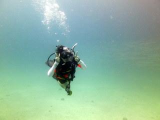 タオ島 ダイビング アドバンス講習5