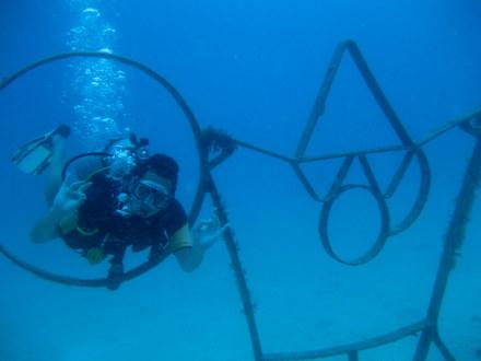 タオ島 ダイビング ボイヤンシーワールド
