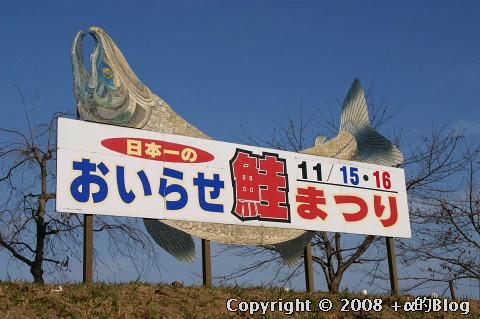 sake08a_eip.jpg