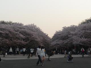 上野公園の人々