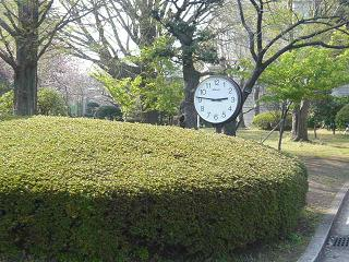 低い所に時計