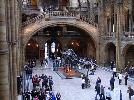 09自然史博物館3