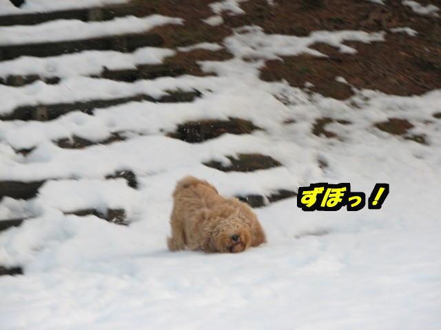 09.1.20康介