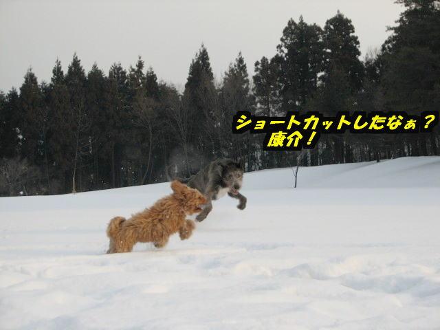 09.1.26べべ&康介2